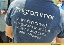 geek-sandbox-programmer-coder-871523.jpeg
