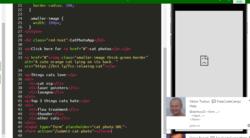 FreeCodeCamp/Help - Gitter