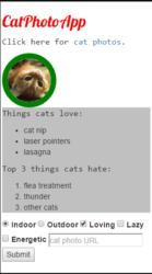 cat app.PNG