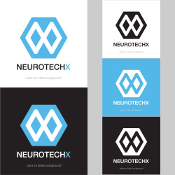 neurotechx_presentation.jpg