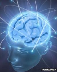 Brain[2].jpg