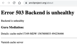 503_Backend_is_unhealthy.png