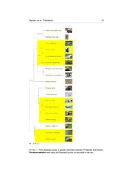 Phylotastic_project_manuscript.pdf